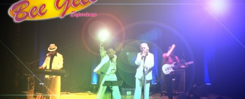 bee gees experience 1